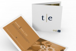 Taylor English firm brochure